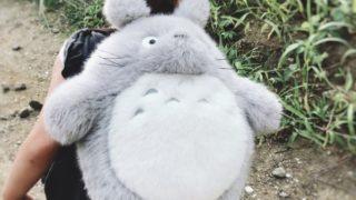 トトロのリュックを背負った2歳
