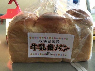 成田ゆめ牧場のショップで購入した牛乳食パン