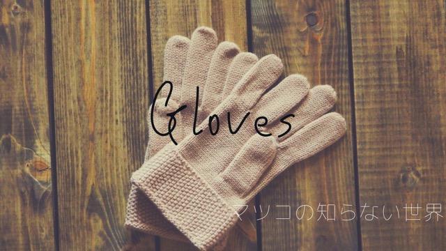 マツコの知らない世界の手袋
